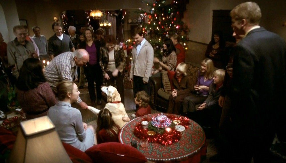 A Dog Named Christmas - Top Dog Movies - Doggies in Town
