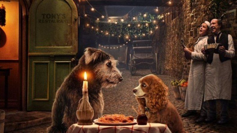 Lady and The Tramp - Top Dog Movies - Doggies in Town